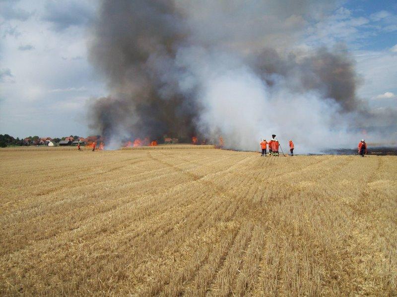 Weizenfeld bei Ostharingen gerät in Brand