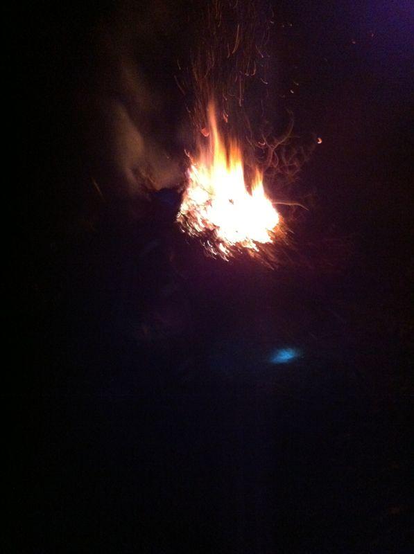 Strauchgut brennt am Sonntagabend