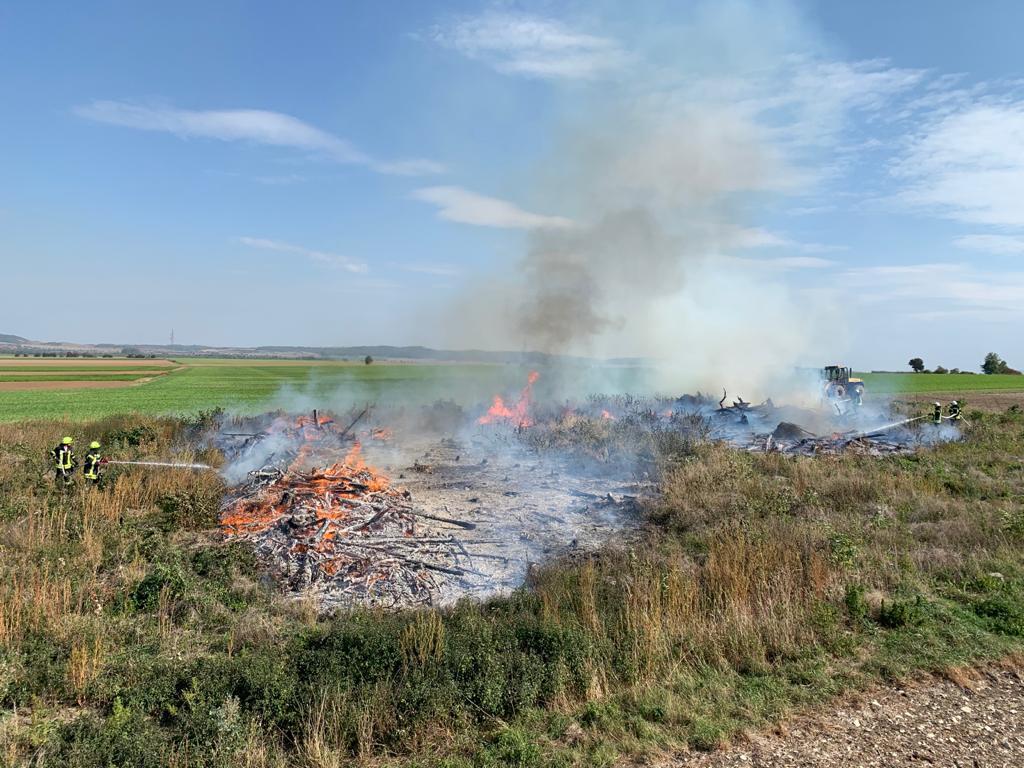 Vegetationsbrand am Harhof
